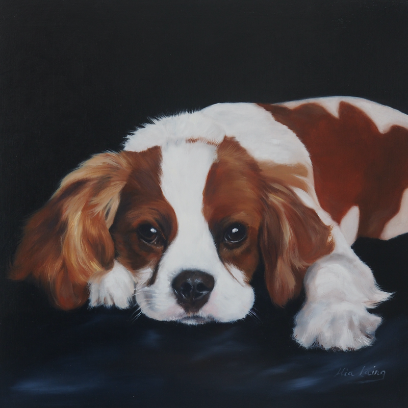 (CreativeWork) Cavalier King Charles Spaniel by Mia Laing. oil-painting. Shop online at Bluethumb.