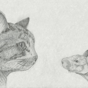 (CreativeWork) The Stand Off by Julie-Anne Gatehouse. drawing. Shop online at Bluethumb.