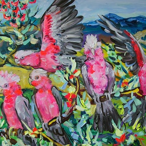 (CreativeWork) Galahs in the Mountains by Katerina Apale. arcylic-painting. Shop online at Bluethumb.