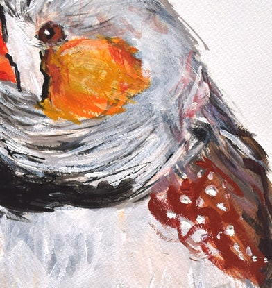 (CreativeWork) Zebra Finch by Rebecca Hill. Mixed Media. Shop online at Bluethumb.