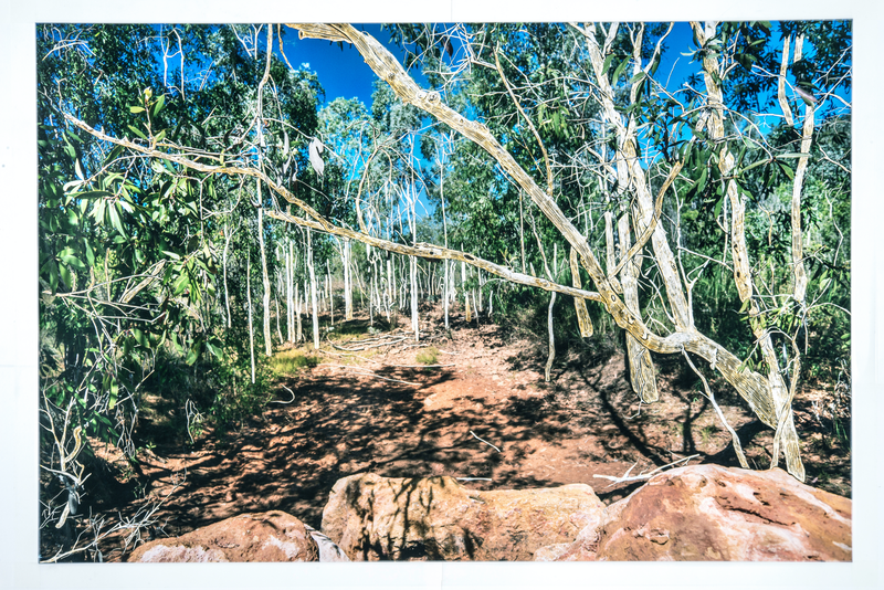 (CreativeWork) Behind the Rocks by Narelle Cridland. photograph. Shop online at Bluethumb.