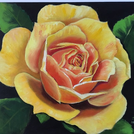 (CreativeWork) Sunny Rose by Jennifer Mitchelson. Oil Paint. Shop online at Bluethumb.