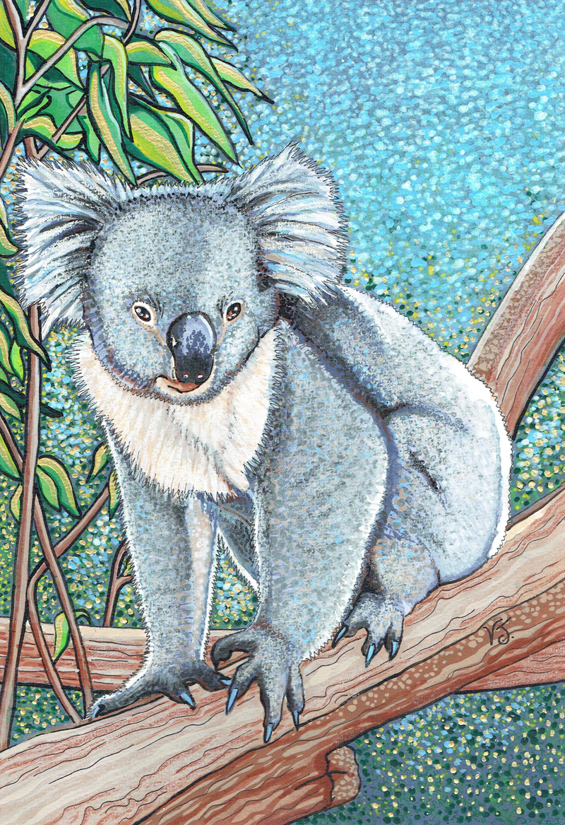 (CreativeWork) Koala by Vikki Jackson. mixed-media. Shop online at Bluethumb.