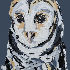 (CreativeWork) Masked Owl  by Lisa Fahey. arcylic-painting. Shop online at Bluethumb.
