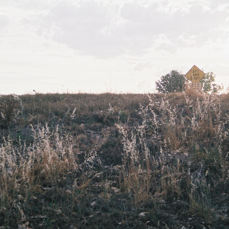 (CreativeWork) Analogue Landscape 03 Ed. 1 of 1 by Rosemary Whatmuff. Photograph. Shop online at Bluethumb.