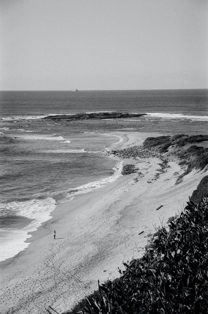 (CreativeWork) Analogue Landscape 05 by Rosemary Whatmuff. photograph. Shop online at Bluethumb.