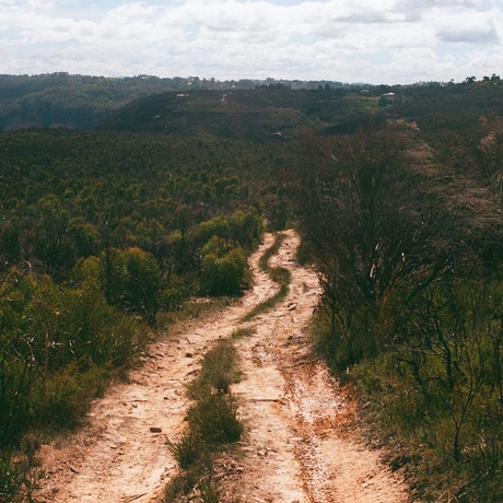 (CreativeWork) Analogue Landscape 07 Ed. 1 of 1 by Rosemary Whatmuff. Photograph. Shop online at Bluethumb.