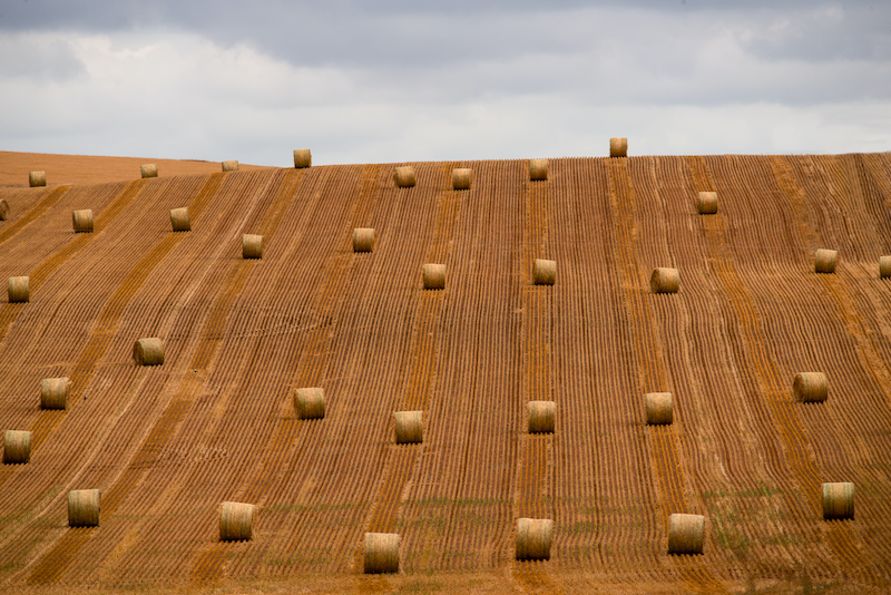 (CreativeWork) Hay bales left and right side of image  by Wendy Philip. photograph. Shop online at Bluethumb.