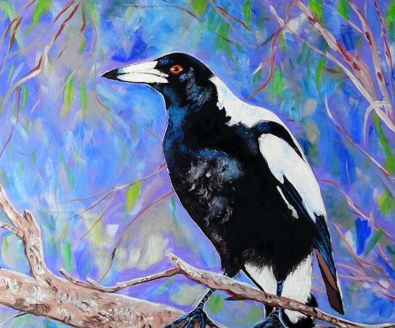 (CreativeWork) Magpie-Finalist Rotary Art Spectacular 2019 by Julie Hollis. acrylic-painting. Shop online at Bluethumb.