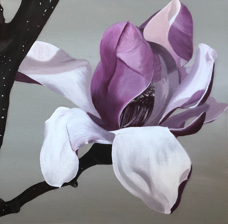 Magnolia Bloom 1 By Patricia Hillard Paintings For Sale Bluethumb