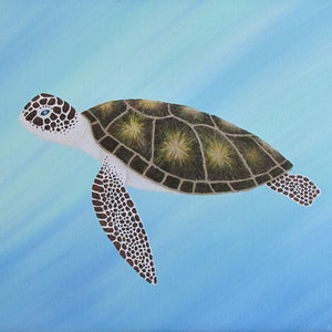 (CreativeWork) Sea Turtle II by Elena Parashko. arcylic-painting. Shop online at Bluethumb.