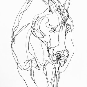 (CreativeWork) Don't Let Go - Equine by Irma Calabrese. drawing. Shop online at Bluethumb.