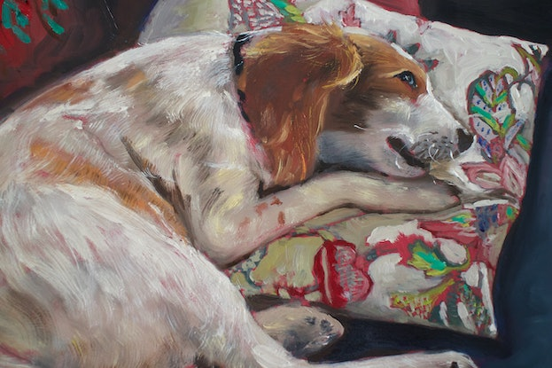 (CreativeWork) He will not be allowed on the couch, Brittany dog by fiona smith. Oil Paint. Shop online at Bluethumb.