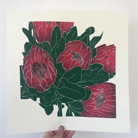 (CreativeWork) Protea   Red Ed. 4 of 50 by Elizabeth MacDougall. Print. Shop online at Bluethumb.