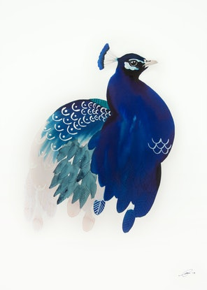 (CreativeWork) The Peacock No.1 by Clare McCartney. Watercolour Paint. Shop online at Bluethumb.