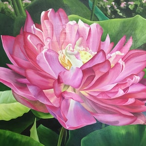 (CreativeWork) Pink water Lily by Linda McGowan. #<Filter:0x00007f1f7d37e800>. Shop online at Bluethumb.