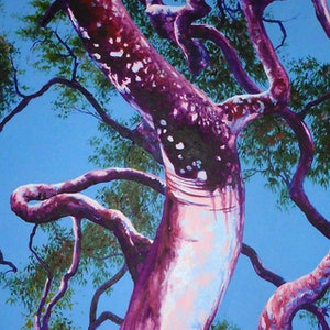 (CreativeWork) Sinuous Angophora by Martin stauce. arcylic-painting. Shop online at Bluethumb.