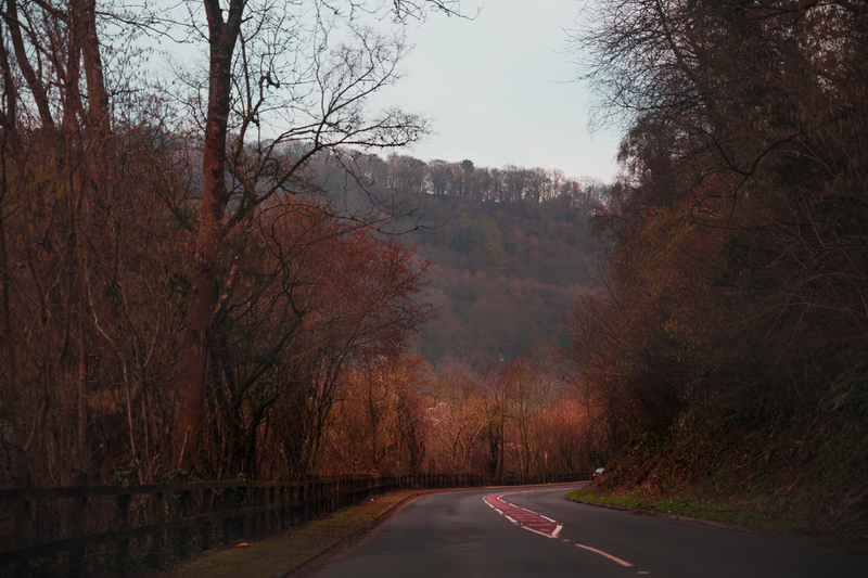 (CreativeWork) Red Road by Megan George. photograph. Shop online at Bluethumb.
