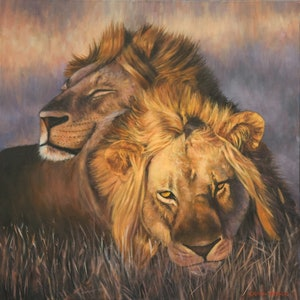 (CreativeWork) Two Lions Dozing by Craig Taylor. oil-painting. Shop online at Bluethumb.