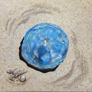 (CreativeWork) Jellyfish on Beach by Vickie Williams. arcylic-painting. Shop online at Bluethumb.