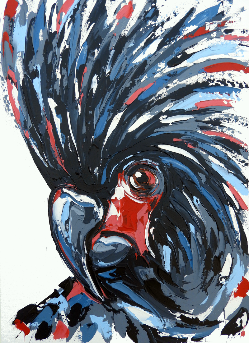 (CreativeWork) Great Black Cockatoo by Lisa Fahey. arcylic-painting. Shop online at Bluethumb.