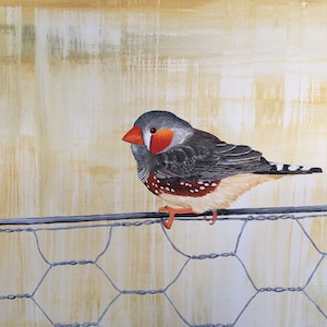 (CreativeWork) Finch // Australian Outback by Eve Sellars. arcylic-painting. Shop online at Bluethumb.