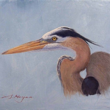 (CreativeWork) The Great Blue Heron by Steven Heyen. Oil Paint. Shop online at Bluethumb.
