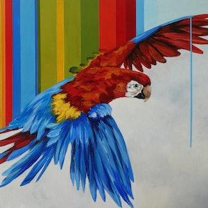 (CreativeWork) Macaw by april white. arcylic-painting. Shop online at Bluethumb.