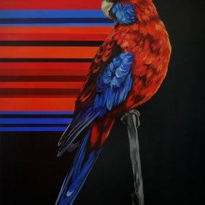 (CreativeWork) Crimson Rosella by april white. arcylic-painting. Shop online at Bluethumb.