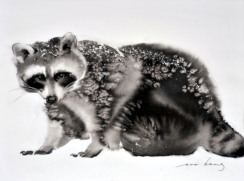 (CreativeWork) Baby Raccoon by Soo Beng Lim. drawing. Shop online at Bluethumb.