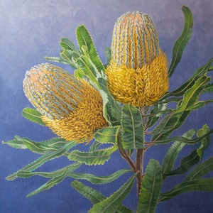 (CreativeWork) Golden Banksias by Fiona Craig. oil-painting. Shop online at Bluethumb.