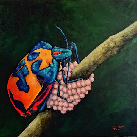 (CreativeWork) Jewel Bug by Wendy A. Greenwood. Acrylic Paint. Shop online at Bluethumb.