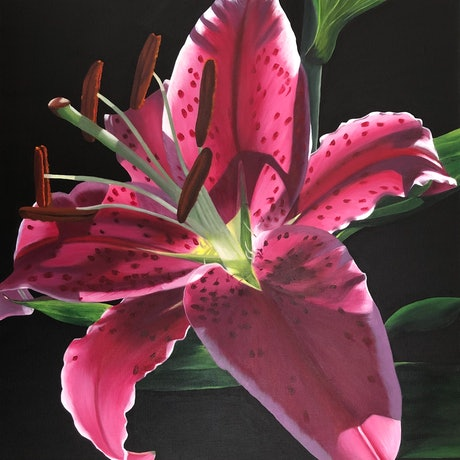 (CreativeWork) Light Filled Lily - Framed by Patricia Hillard. Acrylic Paint. Shop online at Bluethumb.