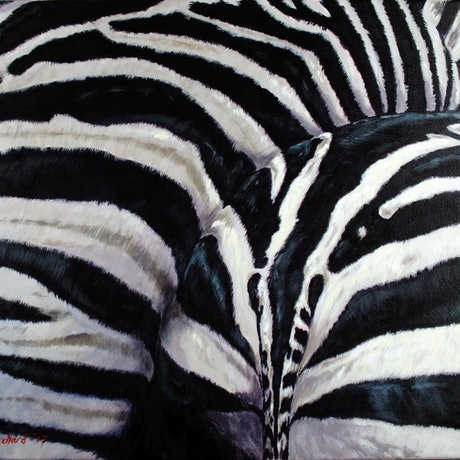 (CreativeWork) Zebra3 by Brendan Blanchard. Acrylic Paint. Shop online at Bluethumb.