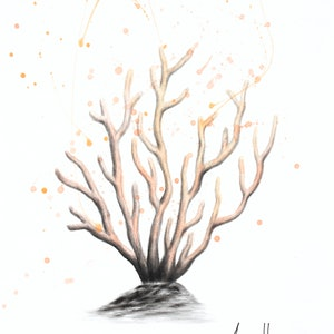 (CreativeWork) New Coral by Ashvin Harrison. drawing. Shop online at Bluethumb.