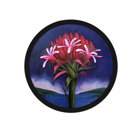 (CreativeWork) Gymea Lily by sophie haythornthwaite. Oil Paint. Shop online at Bluethumb.