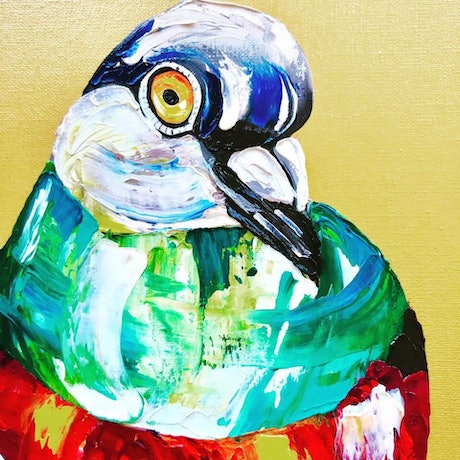 (CreativeWork) Pigeon  by Kylie Cuthbertson. Oil Paint. Shop online at Bluethumb.