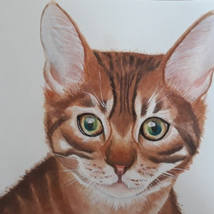 (CreativeWork) Kitten by Svetlana Cook. watercolour. Shop online at Bluethumb.