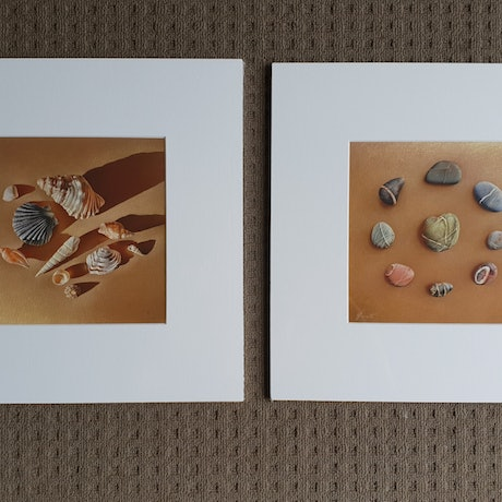 "(CreativeWork) Set of 2 prints - ""Sunlit shells"" and  ""Stone Letters"" by Elena Kolotusha. Print. Shop online at Bluethumb."