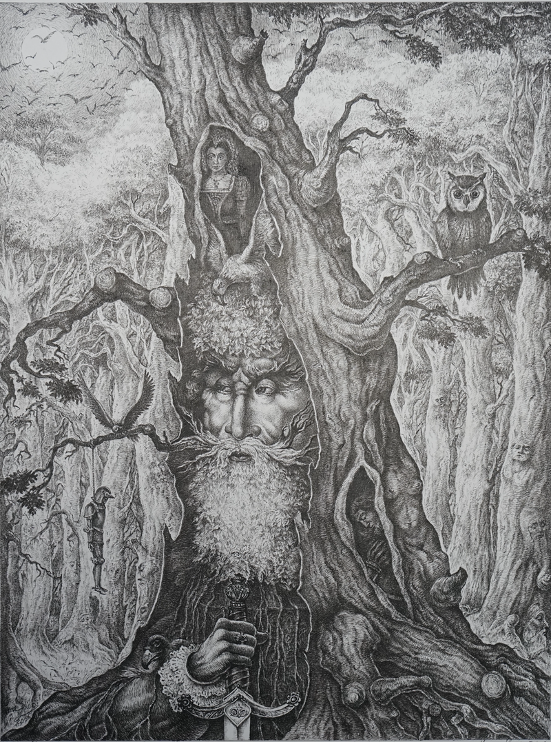 (CreativeWork) The Old Forest King by Imre Zsido. Drawings. Shop online at Bluethumb.