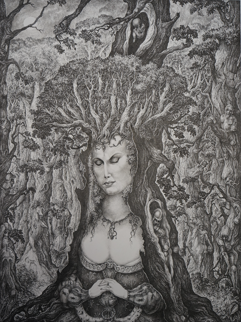 (CreativeWork) The Pretty Forest Queen by Imre Zsido. Drawings. Shop online at Bluethumb.