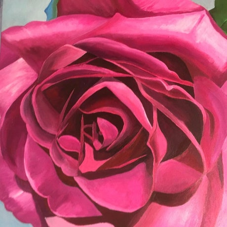 (CreativeWork) Hot Pink Rose by Rosanne Steele. Acrylic Paint. Shop online at Bluethumb.