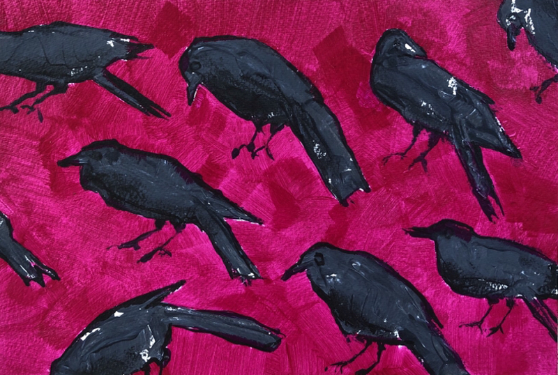 (CreativeWork) Black Crow Magenta  by Kate Gradwell. Acrylic Paint. Shop online at Bluethumb.