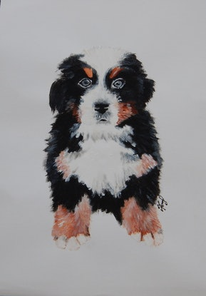 (CreativeWork) My Friend's Dog by Kerry T. Acrylic Paint. Shop online at Bluethumb.