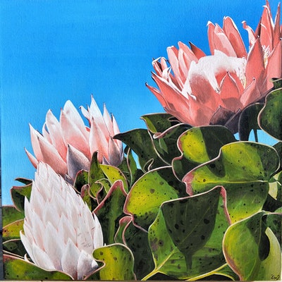 (CreativeWork) Proteas at Callicoma Hill by Lisa Gaudron. acrylic-painting. Shop online at Bluethumb.