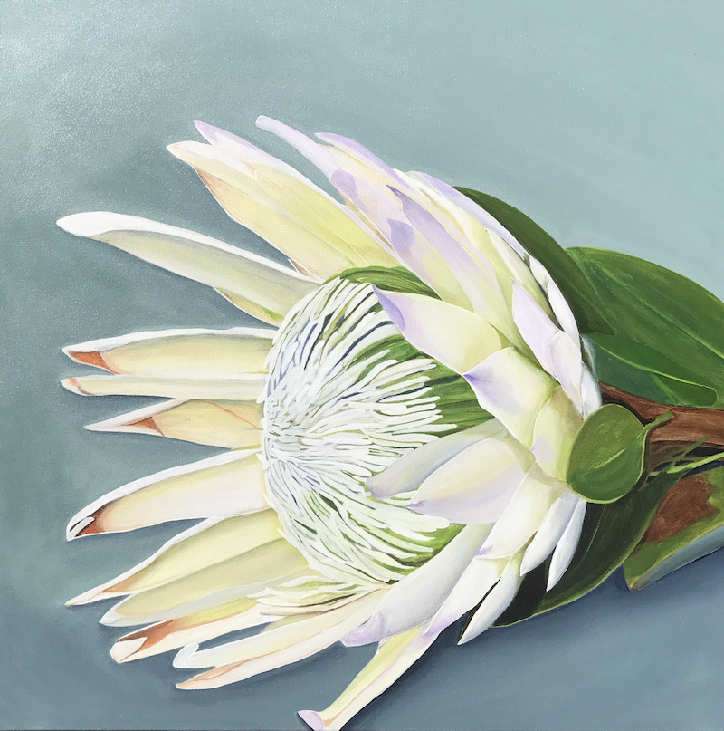 (CreativeWork) King Protea- One of 100 limited edition bespoke fine art print Ed. 21 of 100 by Hayley Kruger. Print. Shop online at Bluethumb.