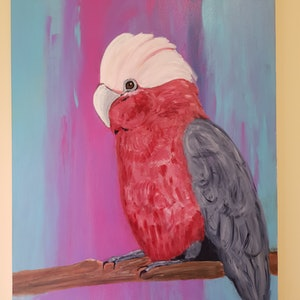 (CreativeWork) Gerry the Galah  by Debra Vivarini. arcylic-painting. Shop online at Bluethumb.