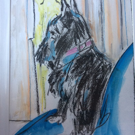 (CreativeWork) Pete's Pup by Gaye Shield. Mixed Media. Shop online at Bluethumb.