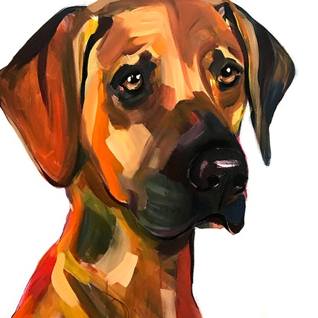 (CreativeWork) FRANK (BOLD) by Jac Clark. Acrylic Paint. Shop online at Bluethumb.