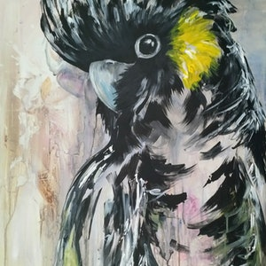 (CreativeWork) Yellow Tailed Black Cockatoo by Amanda Skye. arcylic-painting. Shop online at Bluethumb.